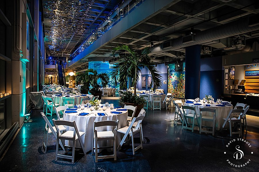 Charleston-Aquarium-Gay-Union-Wedding-Photography_0024